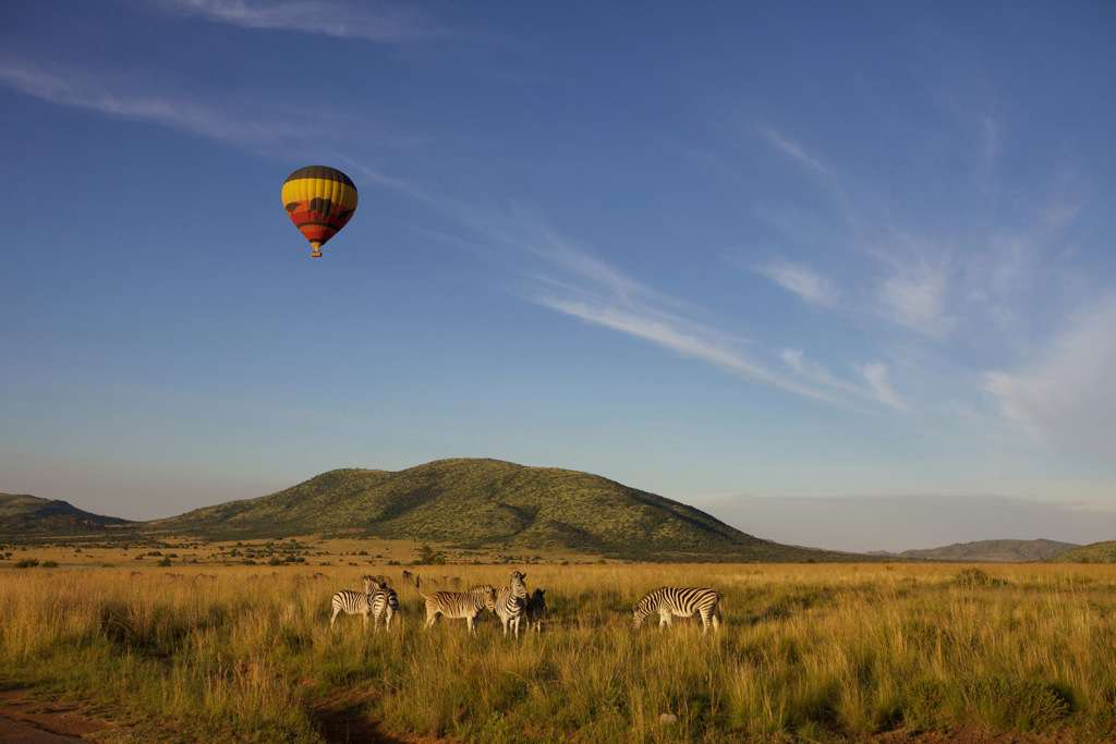 Spectacular new video showcases Pilanesberg in all its glory