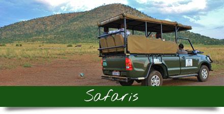 pilanesberg-safaris