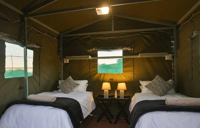 Pilanesberg Tented Safari C& & Tented Safari Camp